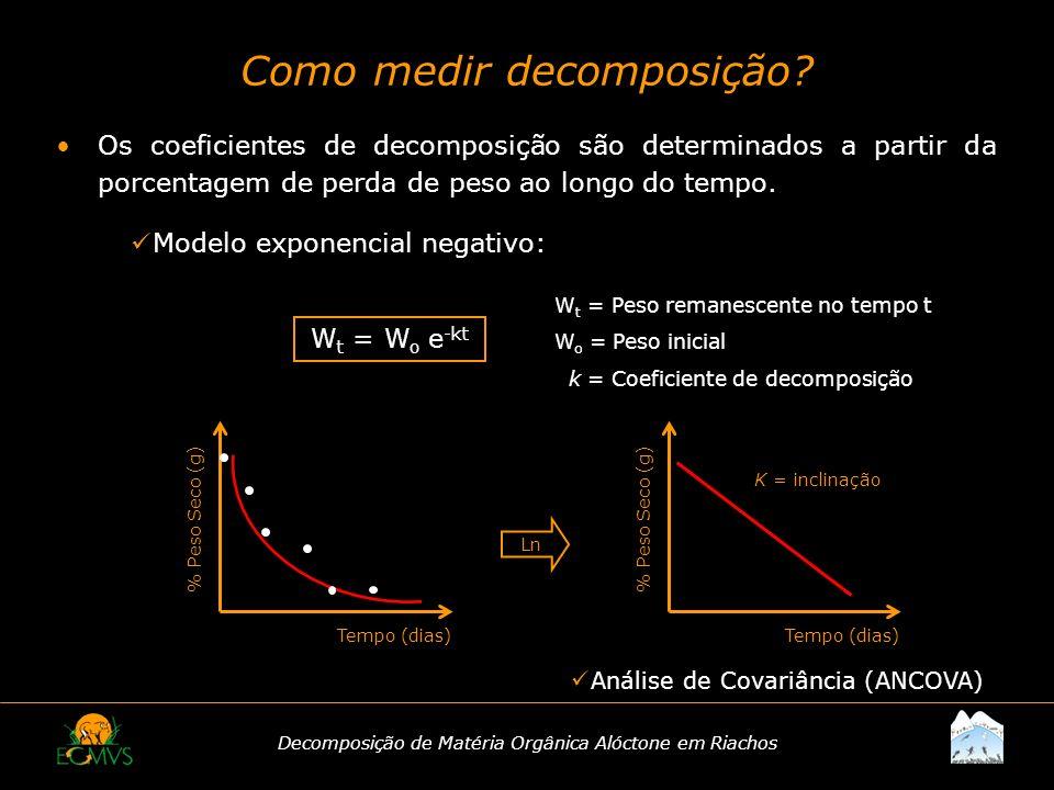 Decomposição de Matéria Orgânica Alóctone em Riachos Como medir decomposição? Os coeficientes de decomposição são determinados a partir da porcentagem