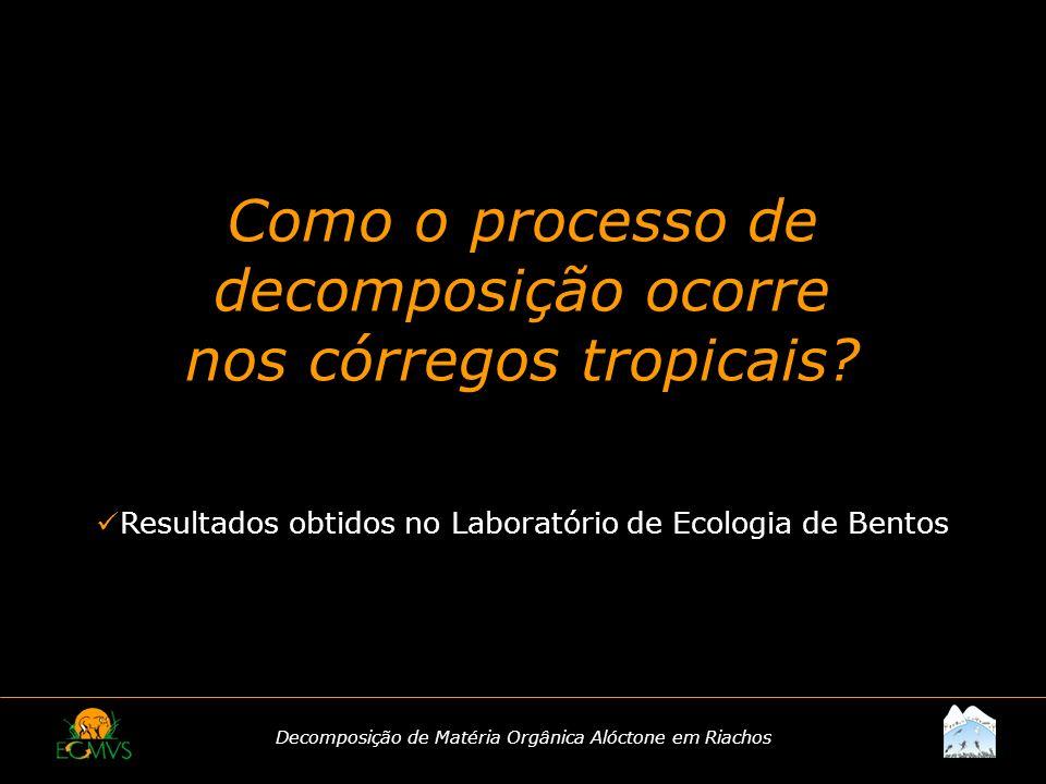 Decomposição de Matéria Orgânica Alóctone em Riachos Como o processo de decomposição ocorre nos córregos tropicais? Resultados obtidos no Laboratório