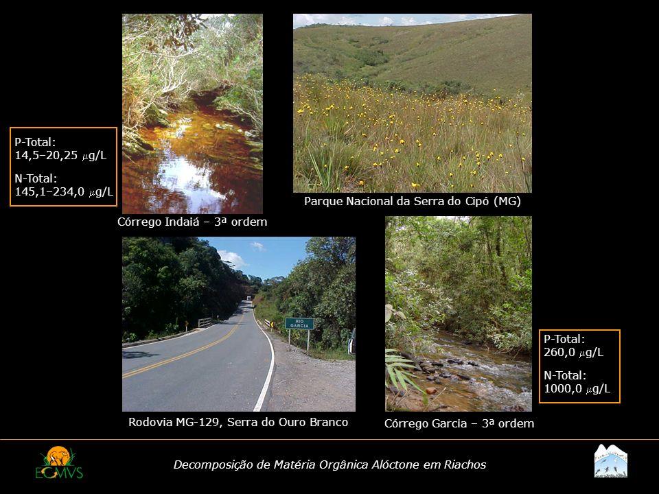 Decomposição de Matéria Orgânica Alóctone em Riachos Córrego Indaiá – 3ª ordem Córrego Garcia – 3ª ordem Parque Nacional da Serra do Cipó (MG) Rodovia