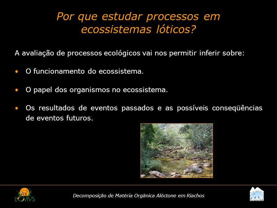 Decomposição de Matéria Orgânica Alóctone em Riachos Por que estudar processos em ecossistemas lóticos? A avaliação de processos ecológicos vai nos pe