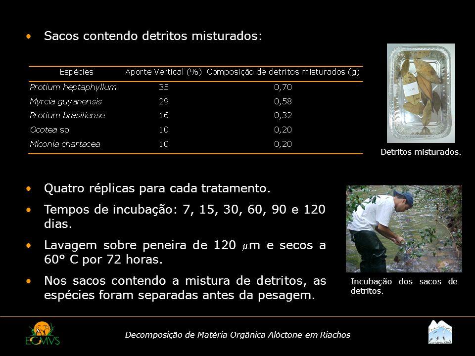 Decomposição de Matéria Orgânica Alóctone em Riachos Sacos contendo detritos misturados: Quatro réplicas para cada tratamento. Tempos de incubação: 7,