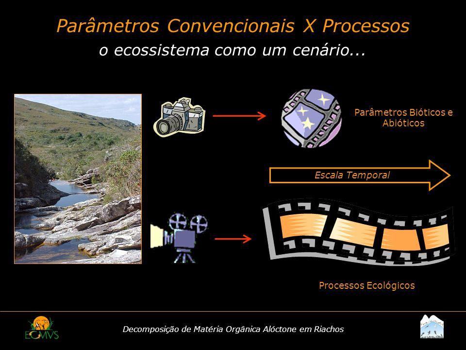 Decomposição de Matéria Orgânica Alóctone em Riachos Parâmetros Convencionais X Processos o ecossistema como um cenário... Escala Temporal Parâmetros