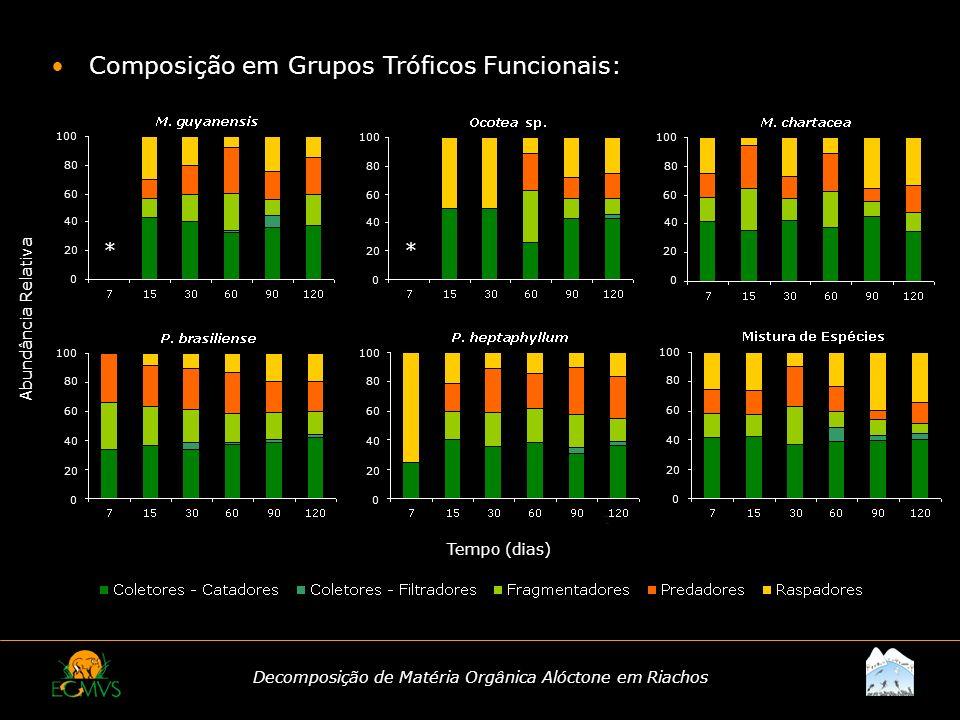 Decomposição de Matéria Orgânica Alóctone em Riachos Composição em Grupos Tróficos Funcionais: Tempo (dias) Abundância Relativa * 100 80 60 40 20 0 *