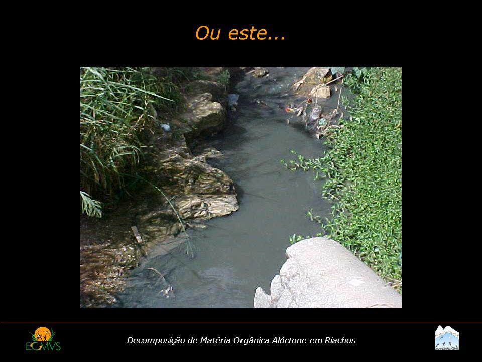 Decomposição de Matéria Orgânica Alóctone em Riachos Ou este...