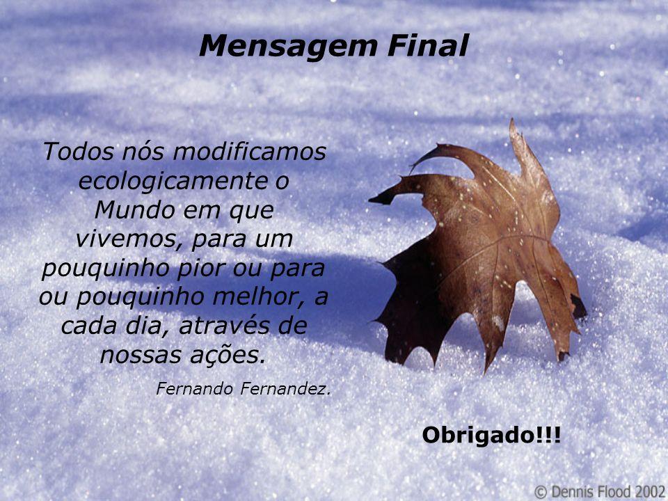 Mensagem Final Todos nós modificamos ecologicamente o Mundo em que vivemos, para um pouquinho pior ou para ou pouquinho melhor, a cada dia, através de