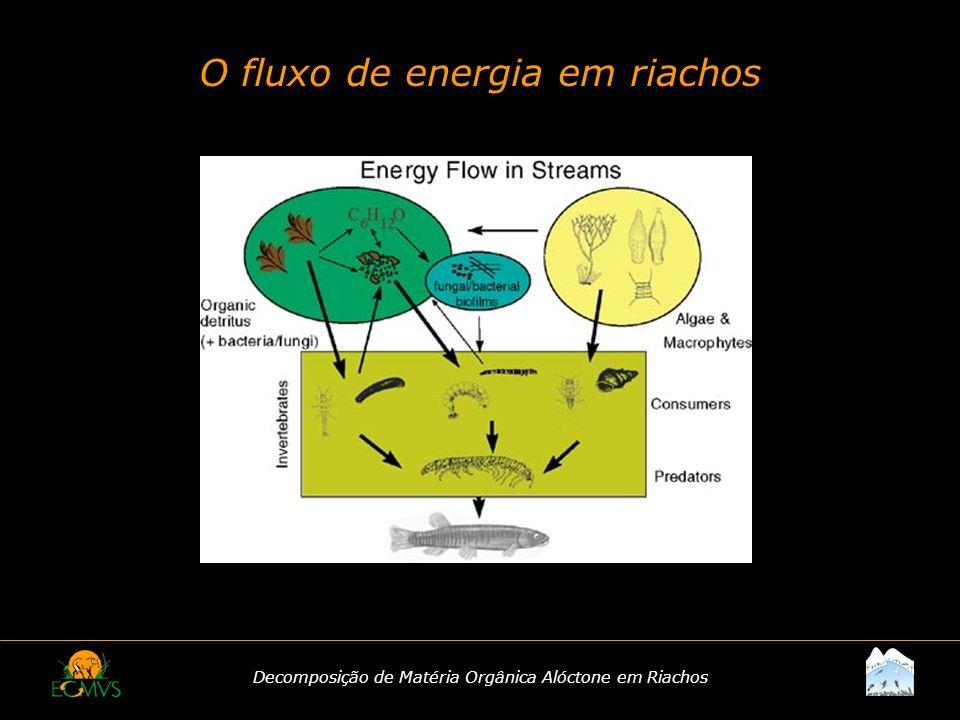 Decomposição de Matéria Orgânica Alóctone em Riachos O Processo de Decomposição O Conceito Degradação de matéria orgânica em compostos simples orgânicos e inorgânicos, com conseqüente liberação de energia.