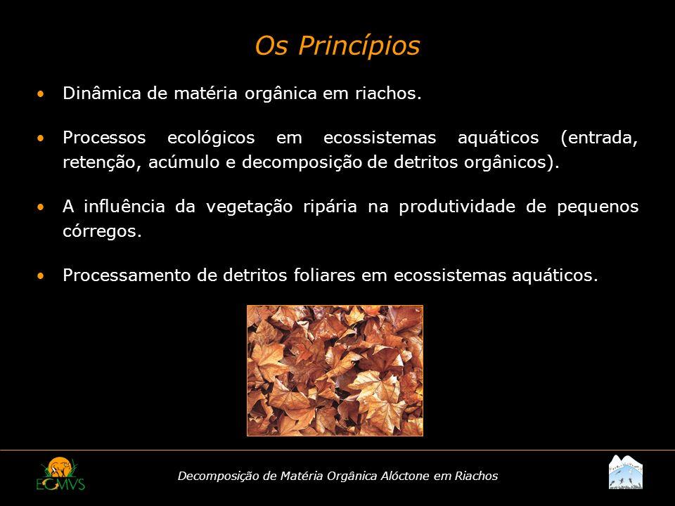 Decomposição de Matéria Orgânica Alóctone em Riachos Dinâmica de matéria orgânica em riachos. Processos ecológicos em ecossistemas aquáticos (entrada,