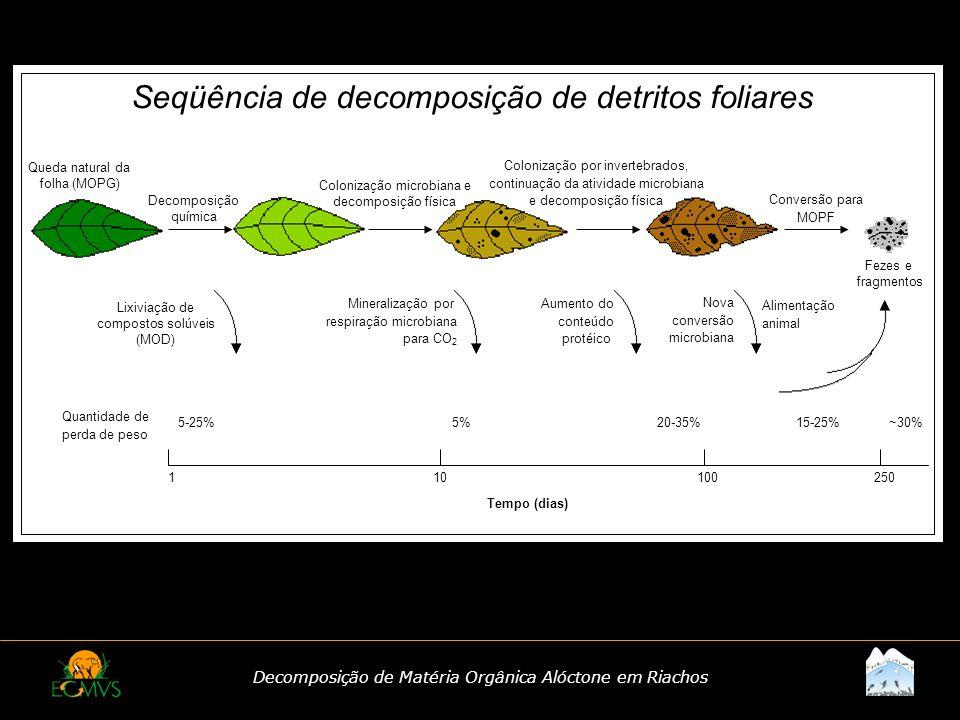 Decomposição de Matéria Orgânica Alóctone em Riachos Seqüência de decomposição de detritos foliares 110100250 Tempo (dias) 5-25% 5% 20-35%15-25%~30% D