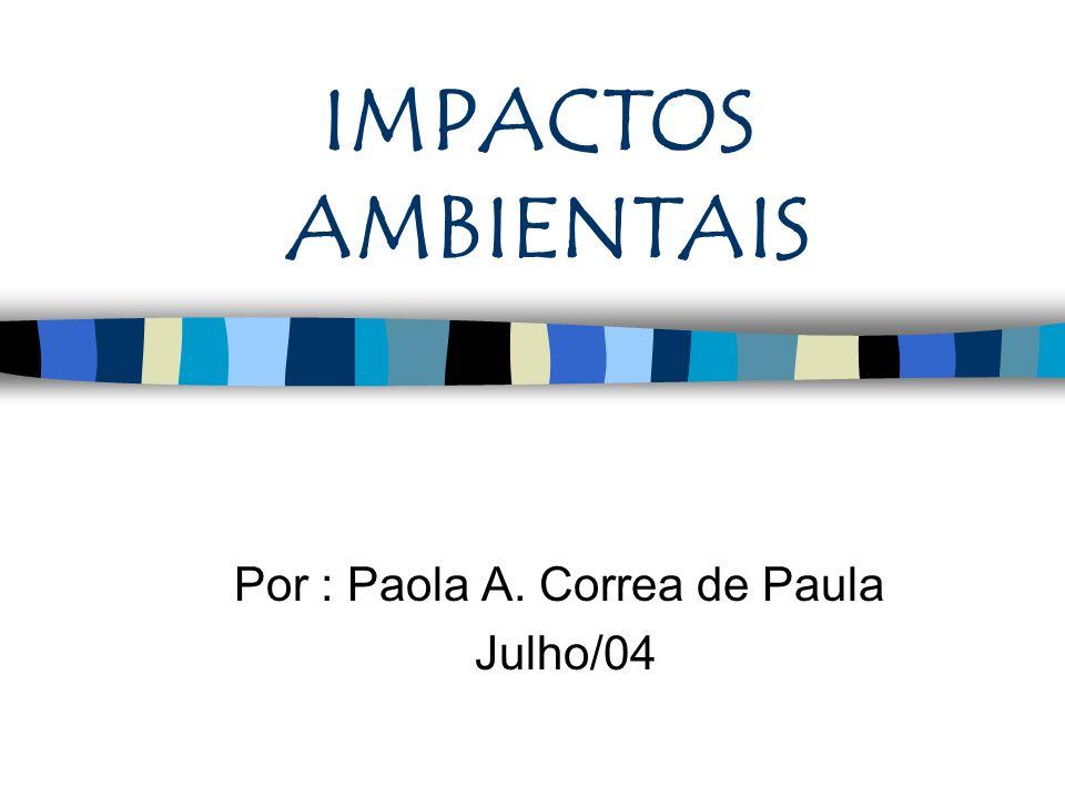 IMPACTOS AMBIENTAIS Por : Paola A. Correa de Paula Julho/04