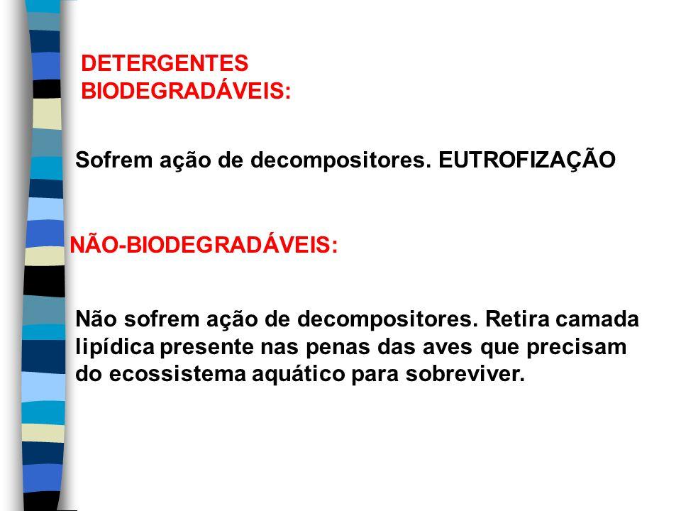 DETERGENTES BIODEGRADÁVEIS: Sofrem ação de decompositores. EUTROFIZAÇÃO NÃO-BIODEGRADÁVEIS: Não sofrem ação de decompositores. Retira camada lipídica