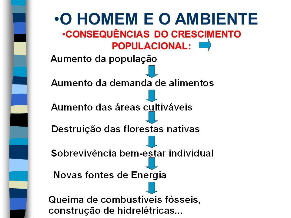 CONSEQUÊNCIAS DO CRESCIMENTO POPULACIONAL: POLUIR É SUJAR.