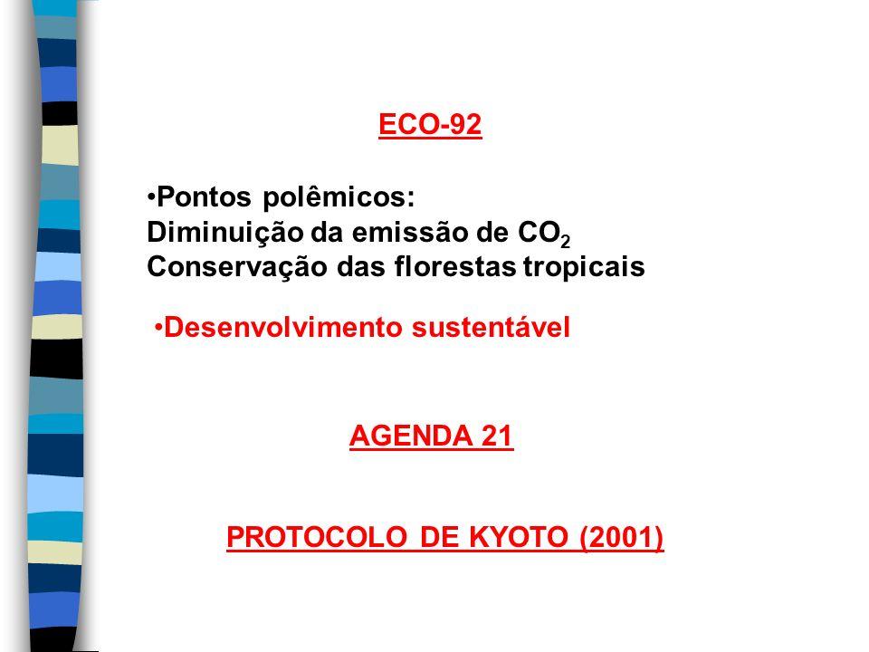 ECO-92 Pontos polêmicos: Diminuição da emissão de CO 2 Conservação das florestas tropicais Desenvolvimento sustentável AGENDA 21 PROTOCOLO DE KYOTO (2