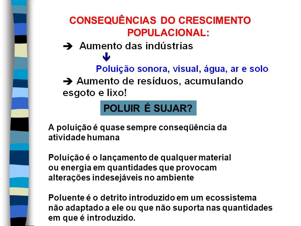 OS MAIORES POLUIDORES DO MUNDO: