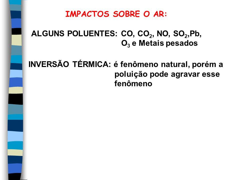 IMPACTOS SOBRE O AR: ALGUNS POLUENTES: CO, CO 2, NO, SO 2,Pb, O 3 e Metais pesados INVERSÃO TÉRMICA: é fenômeno natural, porém a poluição pode agravar