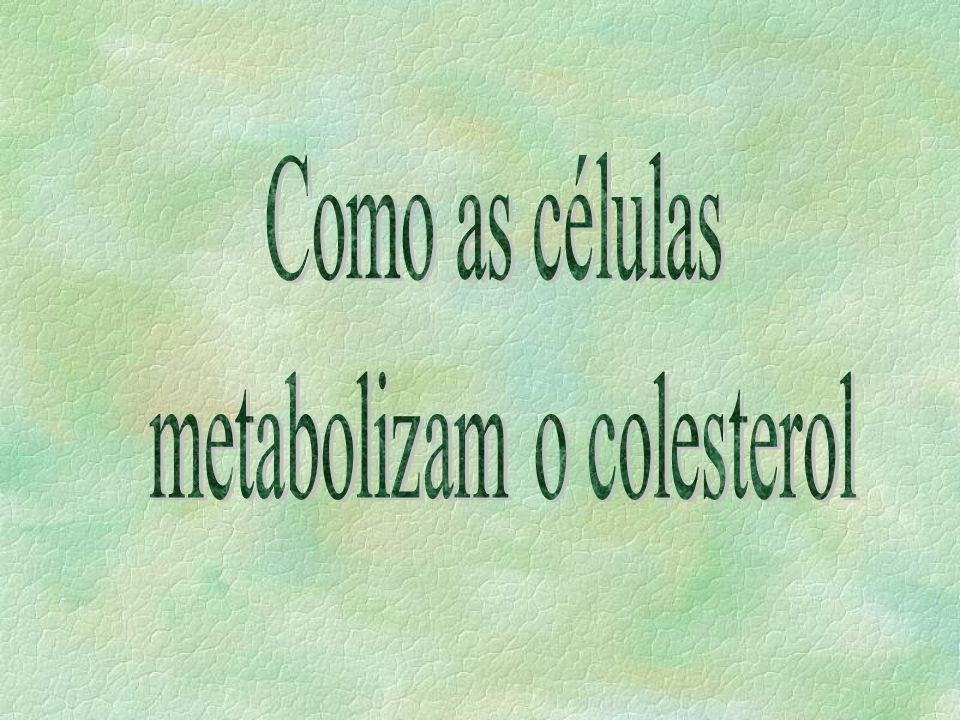 Obtenção do colesterol pela célula: §produção na própria célula §transferência de colesterol da lipoproteína para o folheto externo da bicamada §ação de receptores na membrana