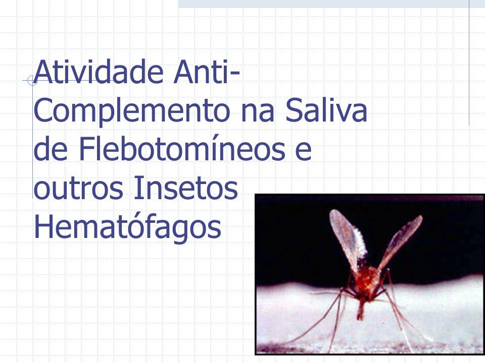 Atividade Anti- Complemento na Saliva de Flebotomíneos e outros Insetos Hematófagos