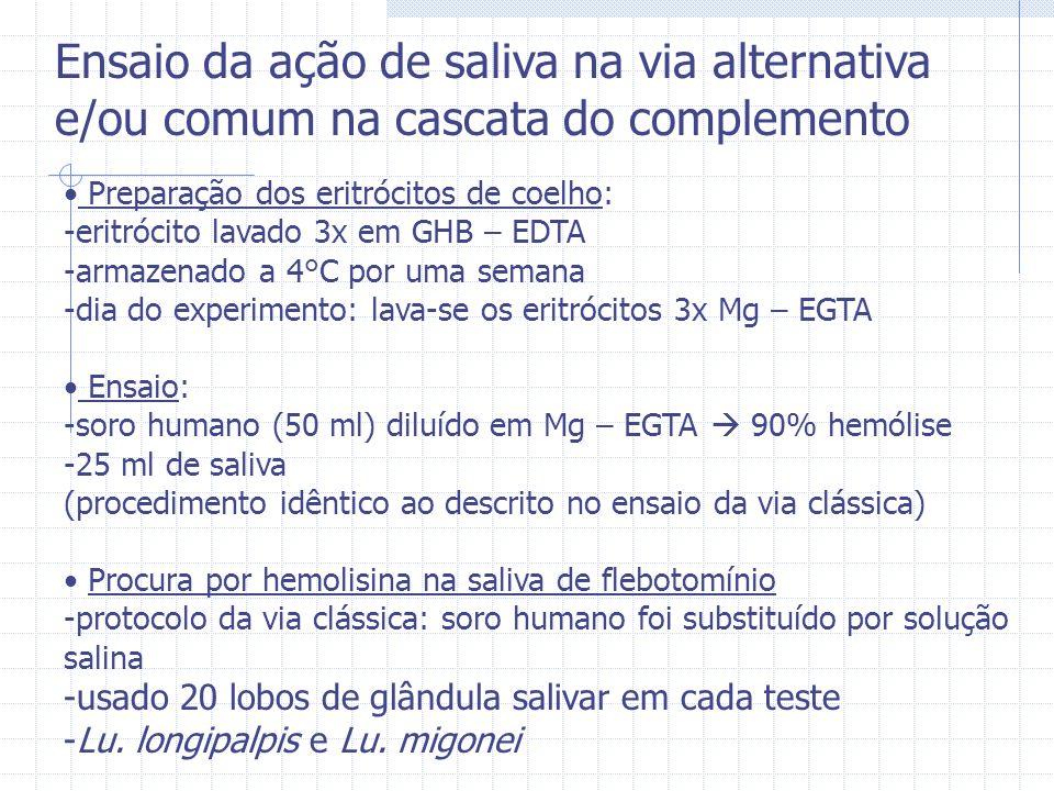 Preparação dos eritrócitos de coelho: -eritrócito lavado 3x em GHB – EDTA -armazenado a 4°C por uma semana -dia do experimento: lava-se os eritrócitos