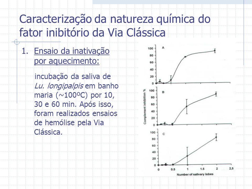Caracterização da natureza química do fator inibitório da Via Clássica 1.Ensaio da inativação por aquecimento: incubação da saliva de Lu. longipalpis