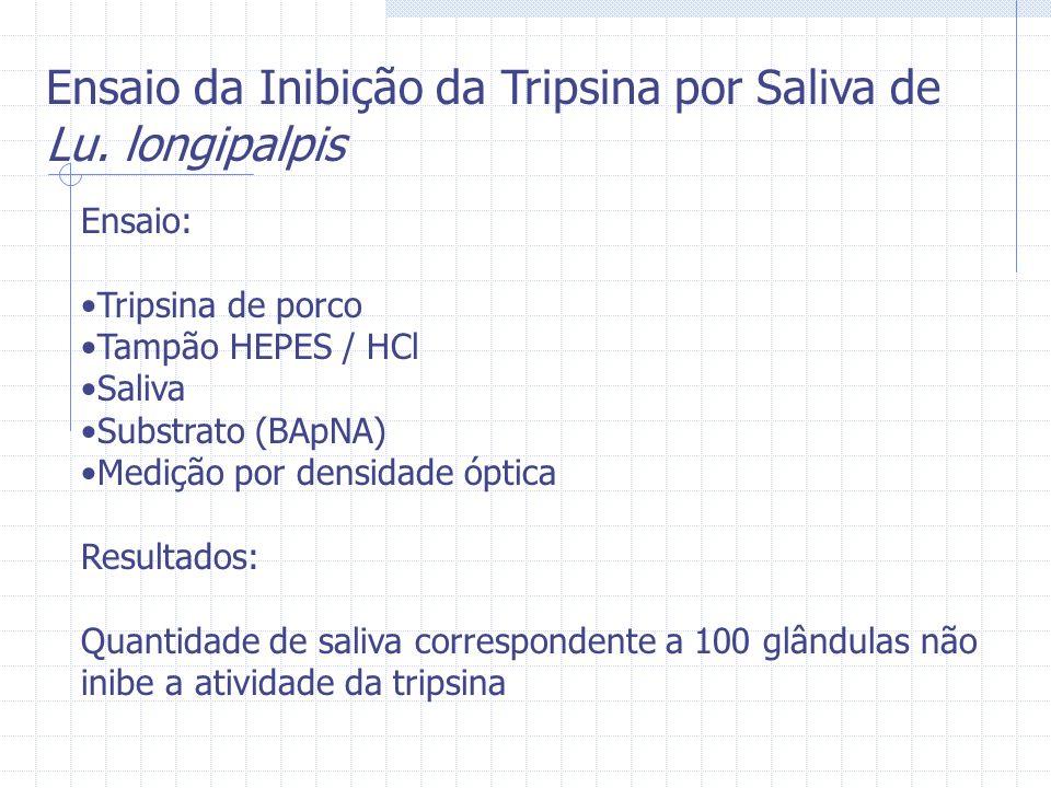 Ensaio: Tripsina de porco Tampão HEPES / HCl Saliva Substrato (BApNA) Medição por densidade óptica Resultados: Quantidade de saliva correspondente a 1