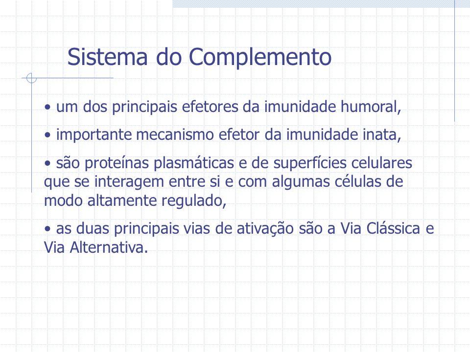 Sistema do Complemento um dos principais efetores da imunidade humoral, importante mecanismo efetor da imunidade inata, são proteínas plasmáticas e de