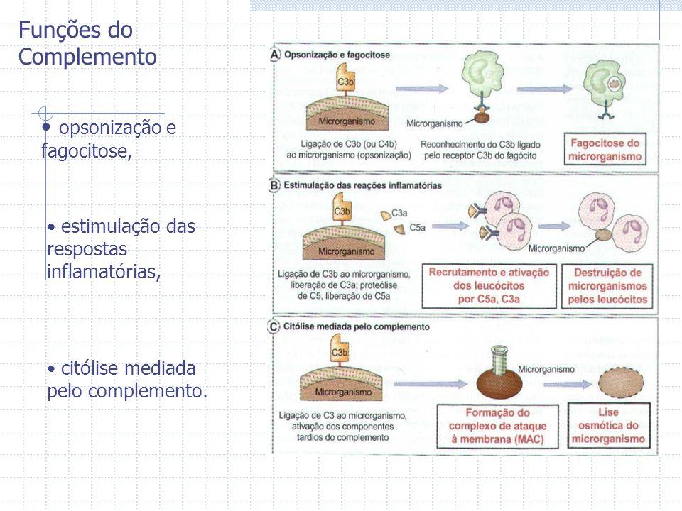 Funções do Complemento opsonização e fagocitose, estimulação das respostas inflamatórias, citólise mediada pelo complemento.