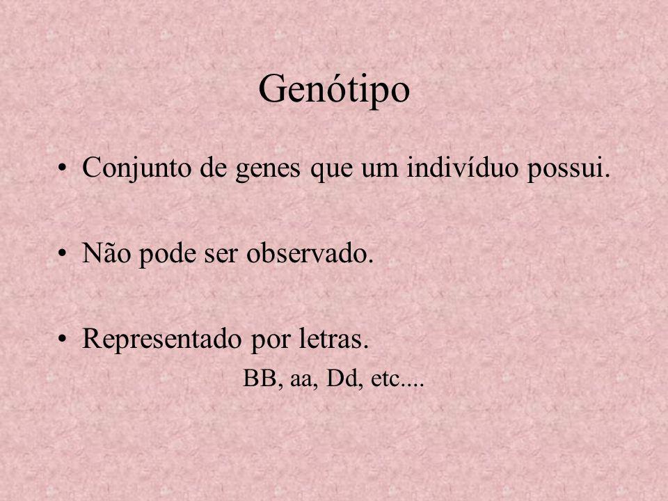 Genótipo Conjunto de genes que um indivíduo possui. Não pode ser observado. Representado por letras. BB, aa, Dd, etc....