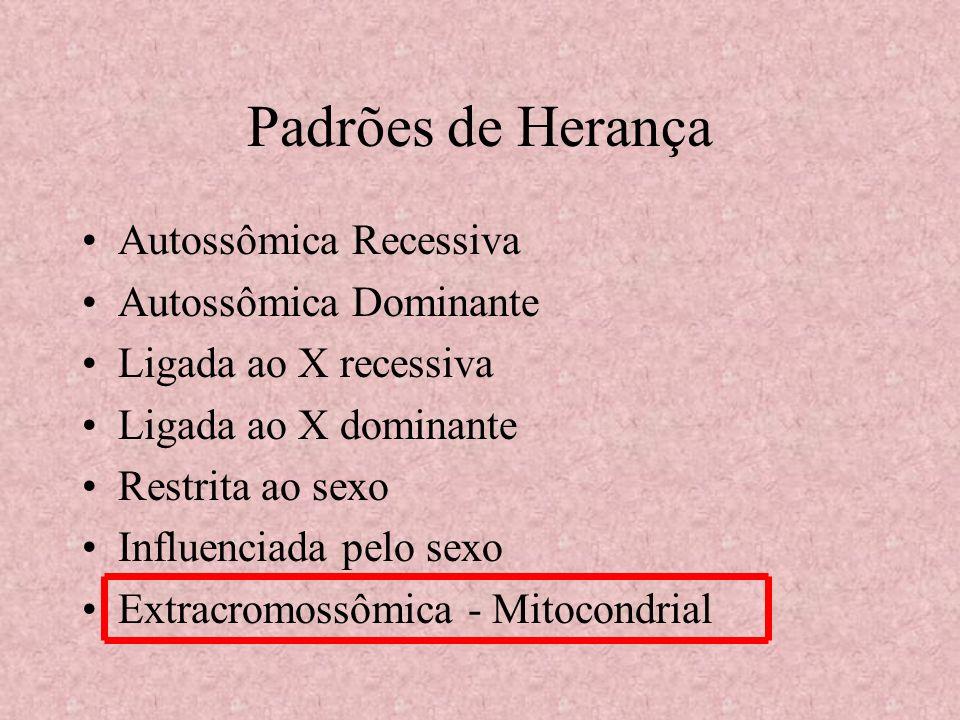 Herança Autossômica Recessiva Gene localizado num cromossomo autossômico Ambos os sexos tem a mesma probabilidade de serem afetados Expressam-se apenas em homozigotos recessivos.