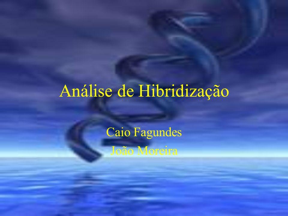 Análise de Hibridização Caio Fagundes João Moreira