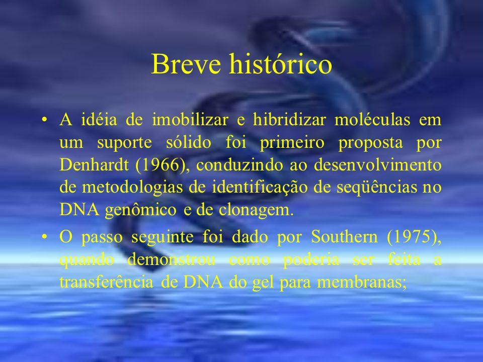 Análise de hibridização de DNA com sonda de DNA marcada Bloqueio de sítios não específicos Incubação com a sonda.