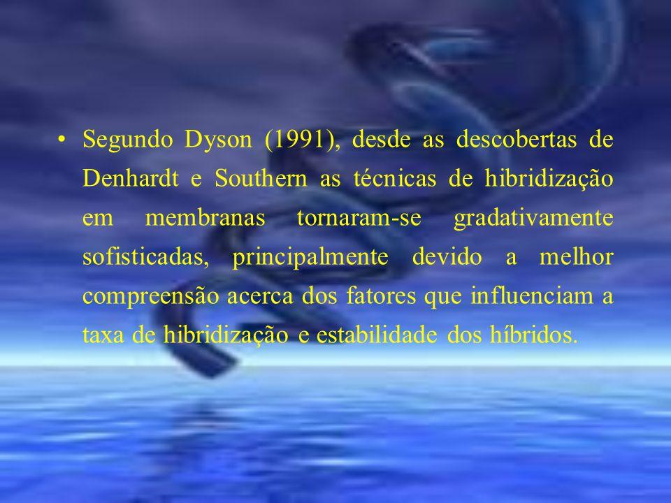 Segundo Dyson (1991), desde as descobertas de Denhardt e Southern as técnicas de hibridização em membranas tornaram-se gradativamente sofisticadas, pr