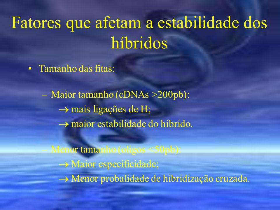 Fatores que afetam a estabilidade dos híbridos Tamanho das fitas: –Maior tamanho (cDNAs >200pb): mais ligações de H; maior estabilidade do híbrido. –M