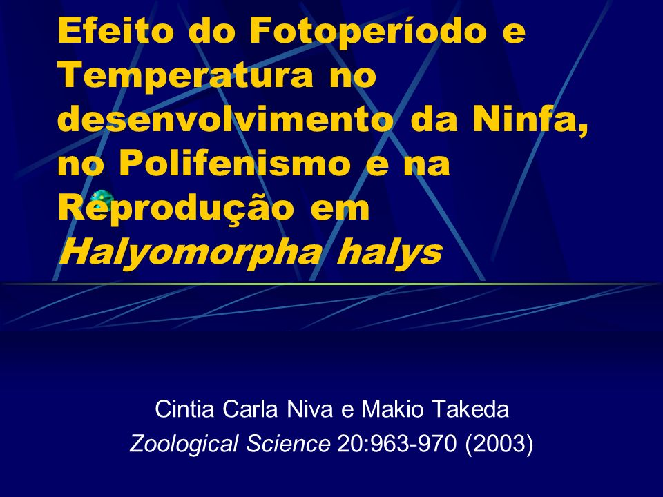 Efeito do Fotoperíodo e Temperatura no desenvolvimento da Ninfa, no Polifenismo e na Reprodução em Halyomorpha halys Cintia Carla Niva e Makio Takeda