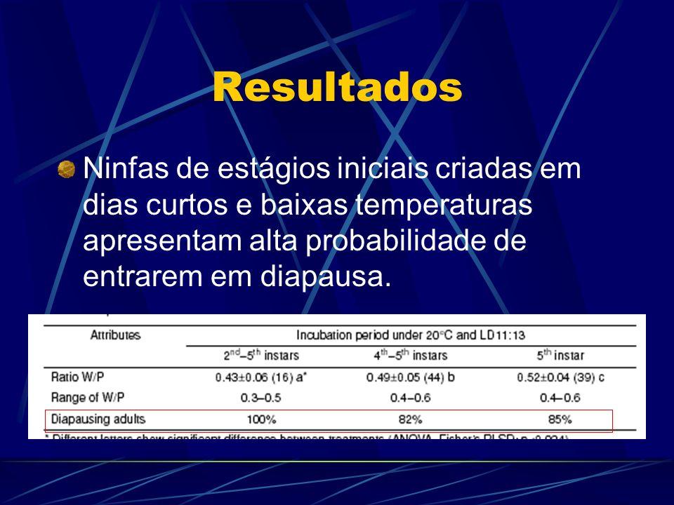 Resultados Ninfas de estágios iniciais criadas em dias curtos e baixas temperaturas apresentam alta probabilidade de entrarem em diapausa.