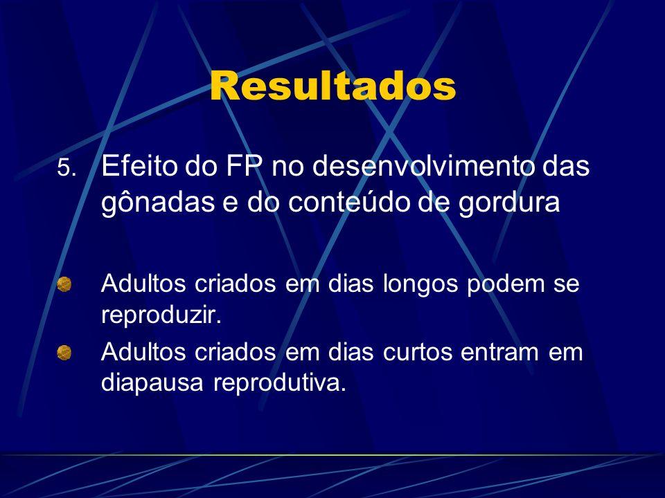 Resultados 5. Efeito do FP no desenvolvimento das gônadas e do conteúdo de gordura Adultos criados em dias longos podem se reproduzir. Adultos criados
