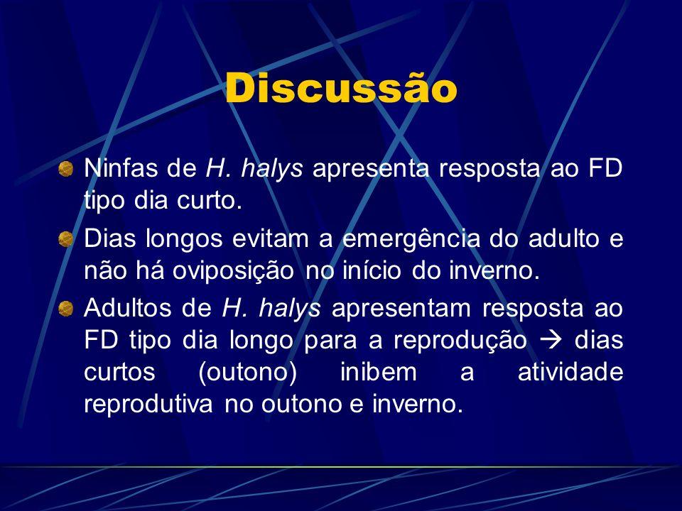 Discussão Ninfas de H. halys apresenta resposta ao FD tipo dia curto. Dias longos evitam a emergência do adulto e não há oviposição no início do inver