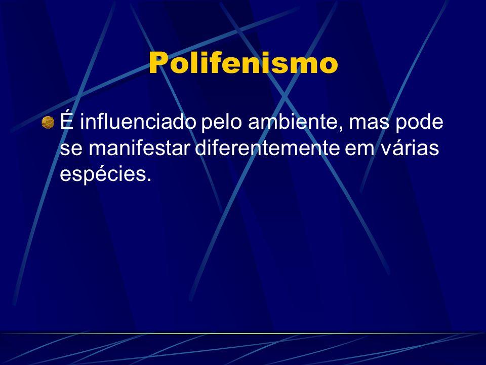 Polifenismo É influenciado pelo ambiente, mas pode se manifestar diferentemente em várias espécies.