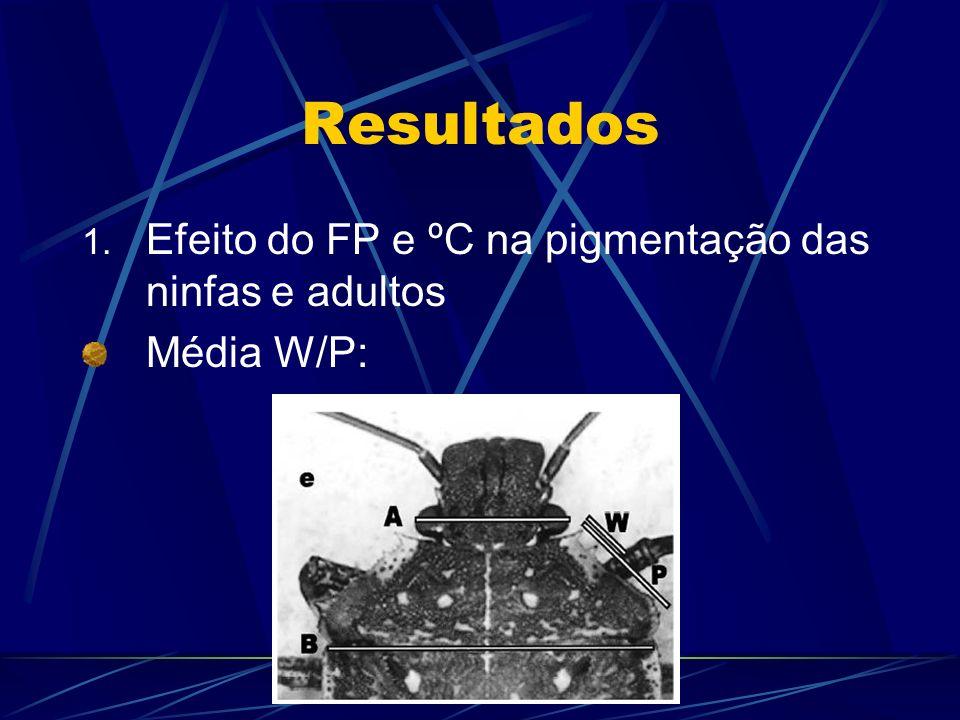 Resultados 1. Efeito do FP e ºC na pigmentação das ninfas e adultos Média W/P: