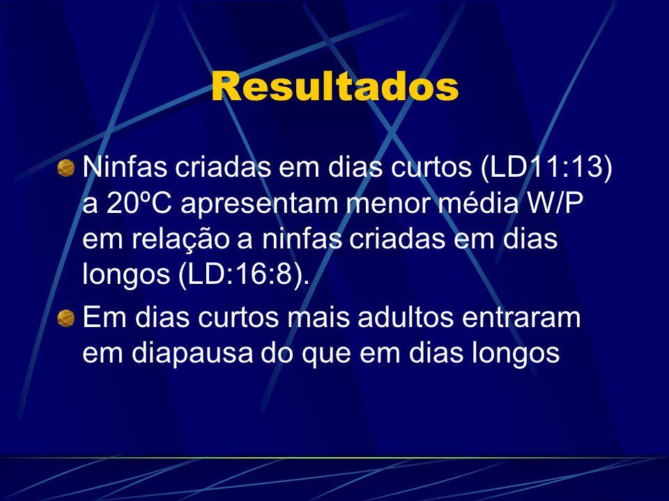 Resultados Ninfas criadas em dias curtos (LD11:13) a 20ºC apresentam menor média W/P em relação a ninfas criadas em dias longos (LD:16:8). Em dias cur