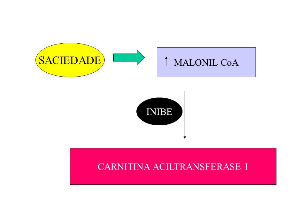 SACIEDADE MALONIL CoA INIBE CARNITINA ACILTRANSFERASE I