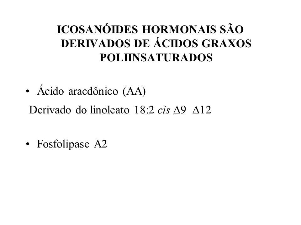 ICOSANÓIDES HORMONAIS SÃO DERIVADOS DE ÁCIDOS GRAXOS POLIINSATURADOS Ácido aracdônico (AA) Derivado do linoleato 18:2 cis 9 12 Fosfolipase A2
