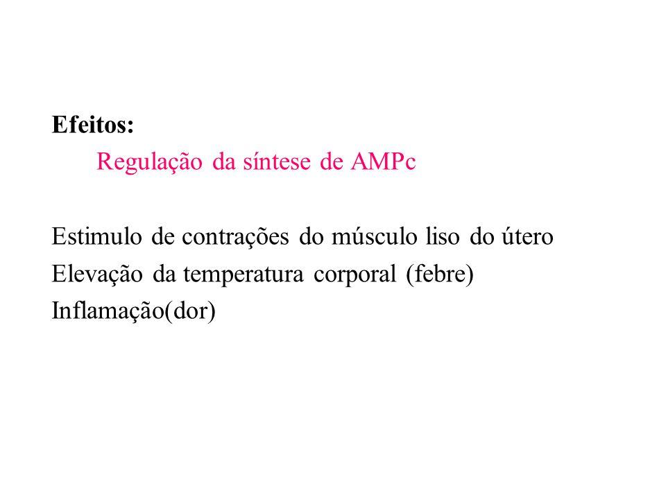 Efeitos: Regulação da síntese de AMPc Estimulo de contrações do músculo liso do útero Elevação da temperatura corporal (febre) Inflamação(dor)