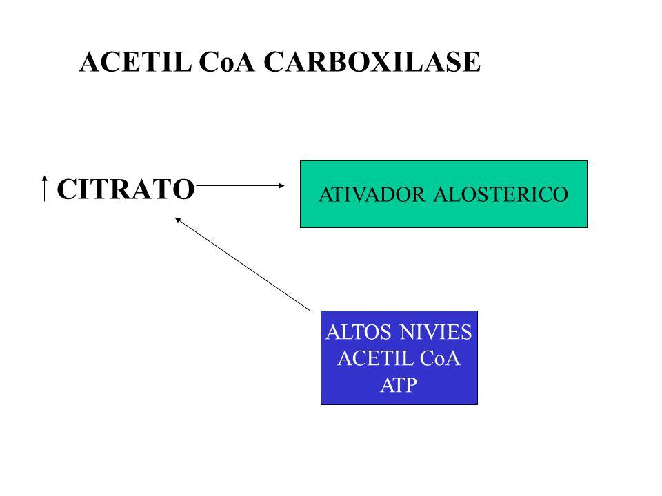 ACETIL CoA CARBOXILASE PALMITIL CoA ANTOGONIZA EFEITO CITRATO INIBE A TRANSLOCASE INIBE A GLICOSE 6-FOSFATO DESIDROGENASE.