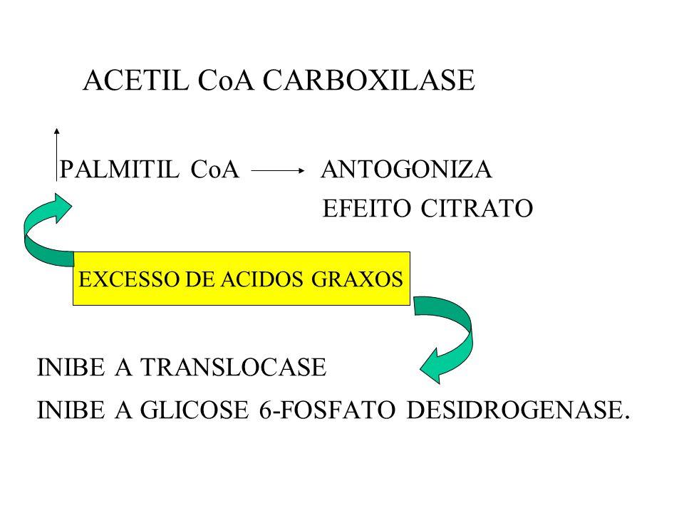 ACETIL CoA CARBOXILASE PALMITIL CoA ANTOGONIZA EFEITO CITRATO INIBE A TRANSLOCASE INIBE A GLICOSE 6-FOSFATO DESIDROGENASE. EXCESSO DE ACIDOS GRAXOS