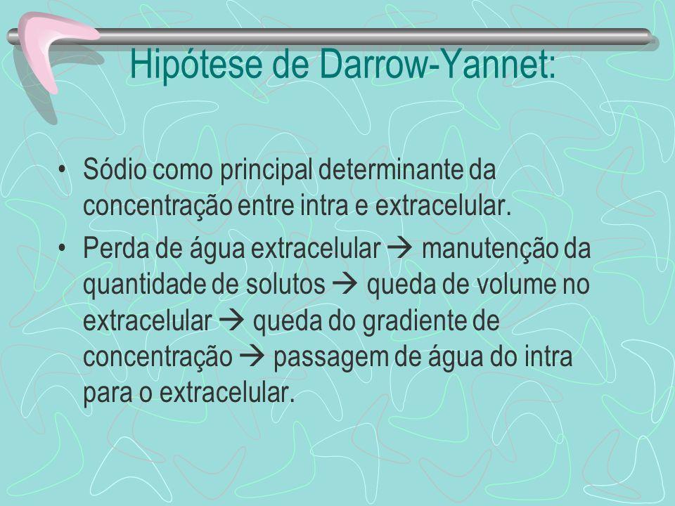 Hipótese de Darrow-Yannet: Sódio como principal determinante da concentração entre intra e extracelular. Perda de água extracelular manutenção da quan