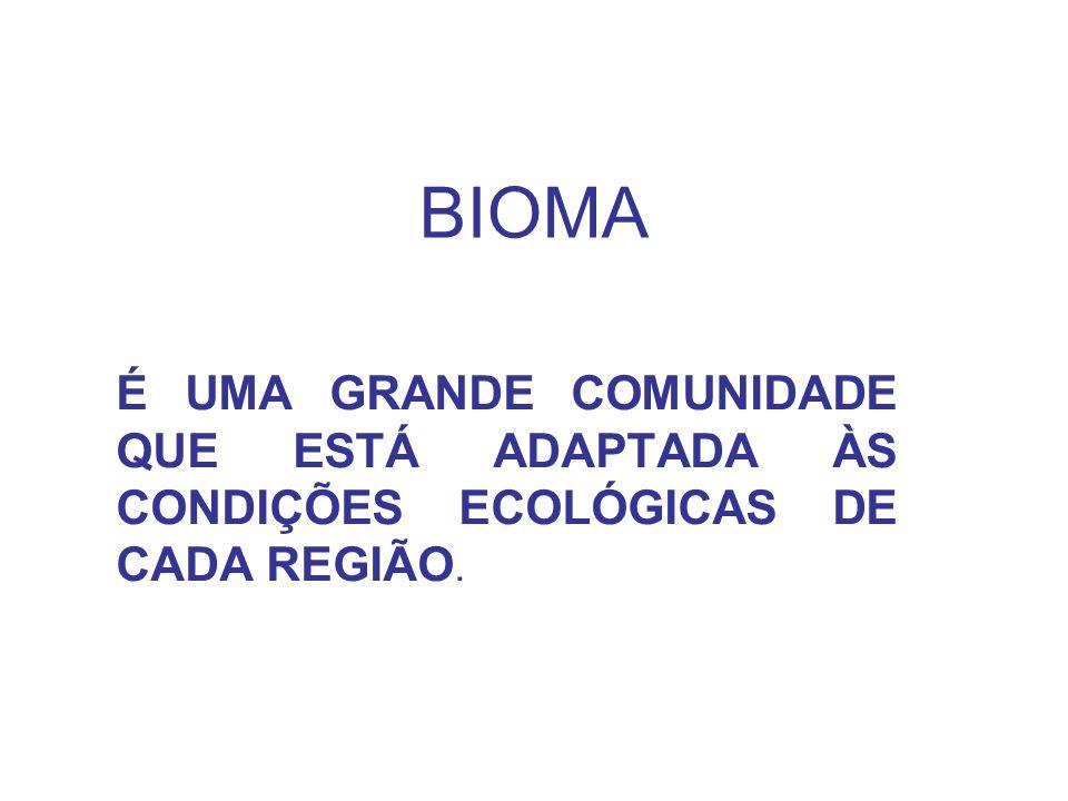 BIOMA É UMA GRANDE COMUNIDADE QUE ESTÁ ADAPTADA ÀS CONDIÇÕES ECOLÓGICAS DE CADA REGIÃO.