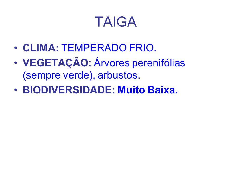 TAIGA CLIMA: TEMPERADO FRIO. VEGETAÇÃO: Árvores perenifólias (sempre verde), arbustos. BIODIVERSIDADE: Muito Baixa.
