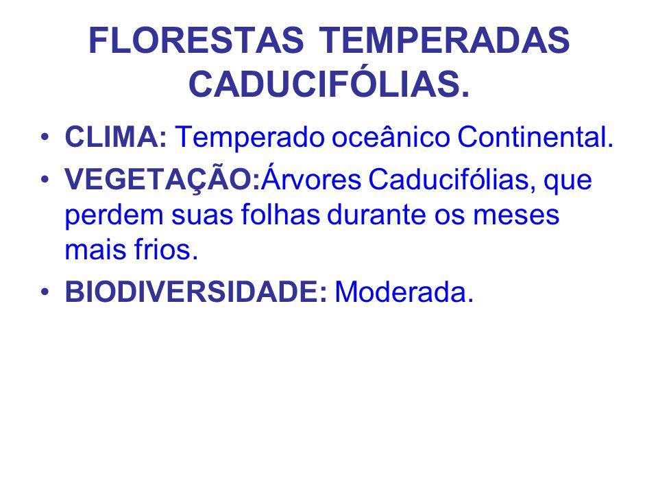FLORESTAS TEMPERADAS CADUCIFÓLIAS. CLIMA: Temperado oceânico Continental. VEGETAÇÃO:Árvores Caducifólias, que perdem suas folhas durante os meses mais