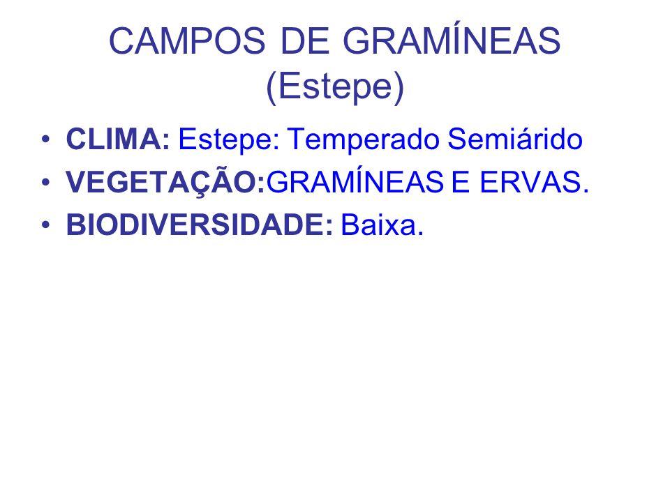 CAMPOS DE GRAMÍNEAS (Estepe) CLIMA: Estepe: Temperado Semiárido VEGETAÇÃO:GRAMÍNEAS E ERVAS. BIODIVERSIDADE: Baixa.