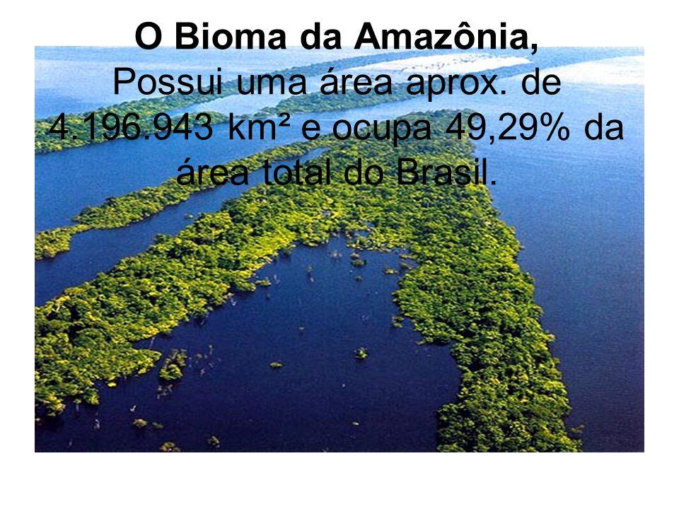 O Bioma da Amazônia, Possui uma área aprox. de 4.196.943 km² e ocupa 49,29% da área total do Brasil.