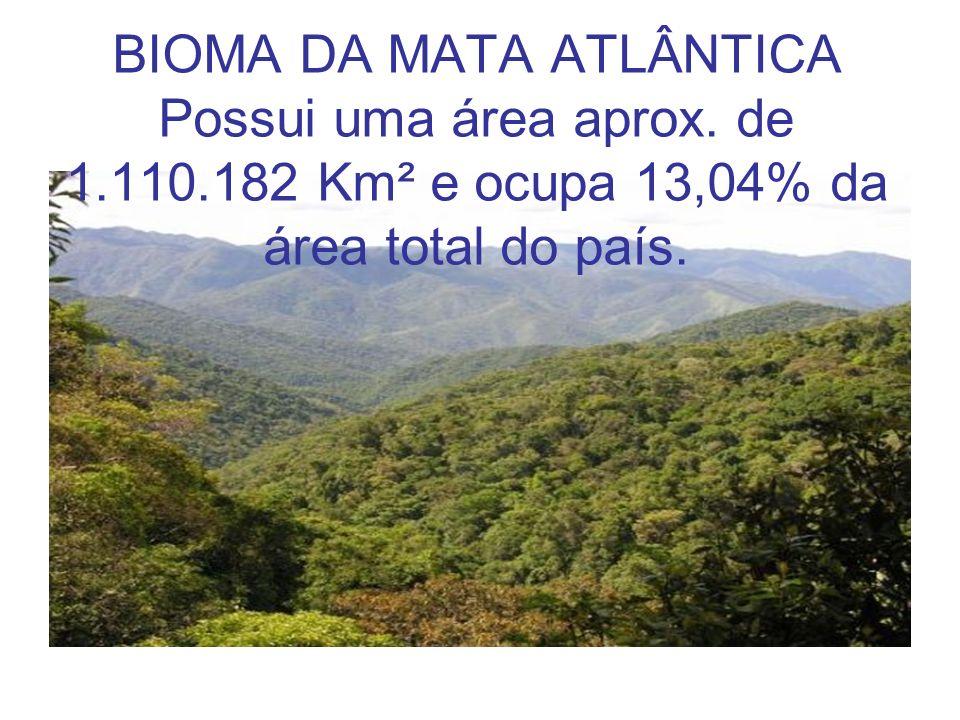 BIOMA DA MATA ATLÂNTICA Possui uma área aprox. de 1.110.182 Km² e ocupa 13,04% da área total do país.